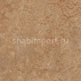 Натуральный линолеум Forbo Marmoleum Real 3233
