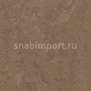 Натуральный линолеум Forbo Marmoleum Real 3254